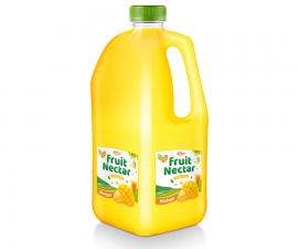 Fruit Nectar 2L with mango flavor