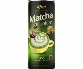 MATCHA COFFEE  250 ML CANNED SUPPLIER
