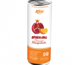 Rita Manufacturer 250ml Canned Sparkling Pomegranate and Orange juice drink