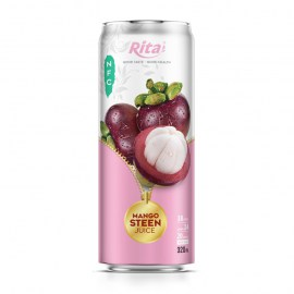 548362359-mangosteen-rita-juice-rita-320ml